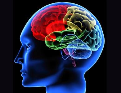mind health associates